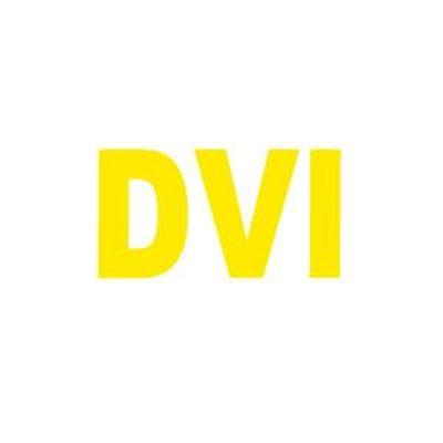 Imagen para la categoría DVI