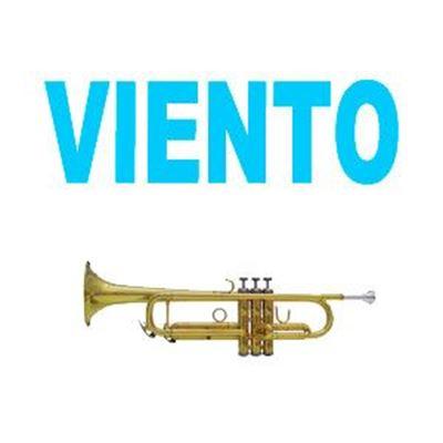 Imagen para la categoría Instrumentos Viento