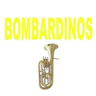 Imagen para la categoría Bombardinos