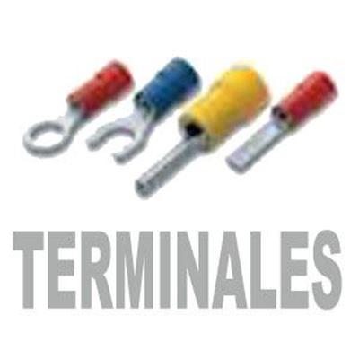 Imagen para la categoría Terminales